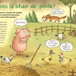 chairpoule
